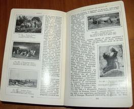 Antique Book Apollo Salomon Reinach Italian Illustrated Art Book ~1920 Italy  image 10