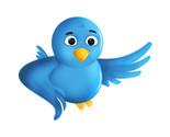 Twitter icon thumb155 crop