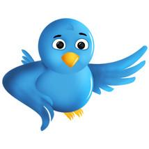 Twitter icon thumb200