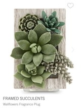 NEW 1 BATH & BODY WORKS FRAMED SUCCULENTS WALLFLOWER FRAGRANCE PLUG IN H... - $19.60
