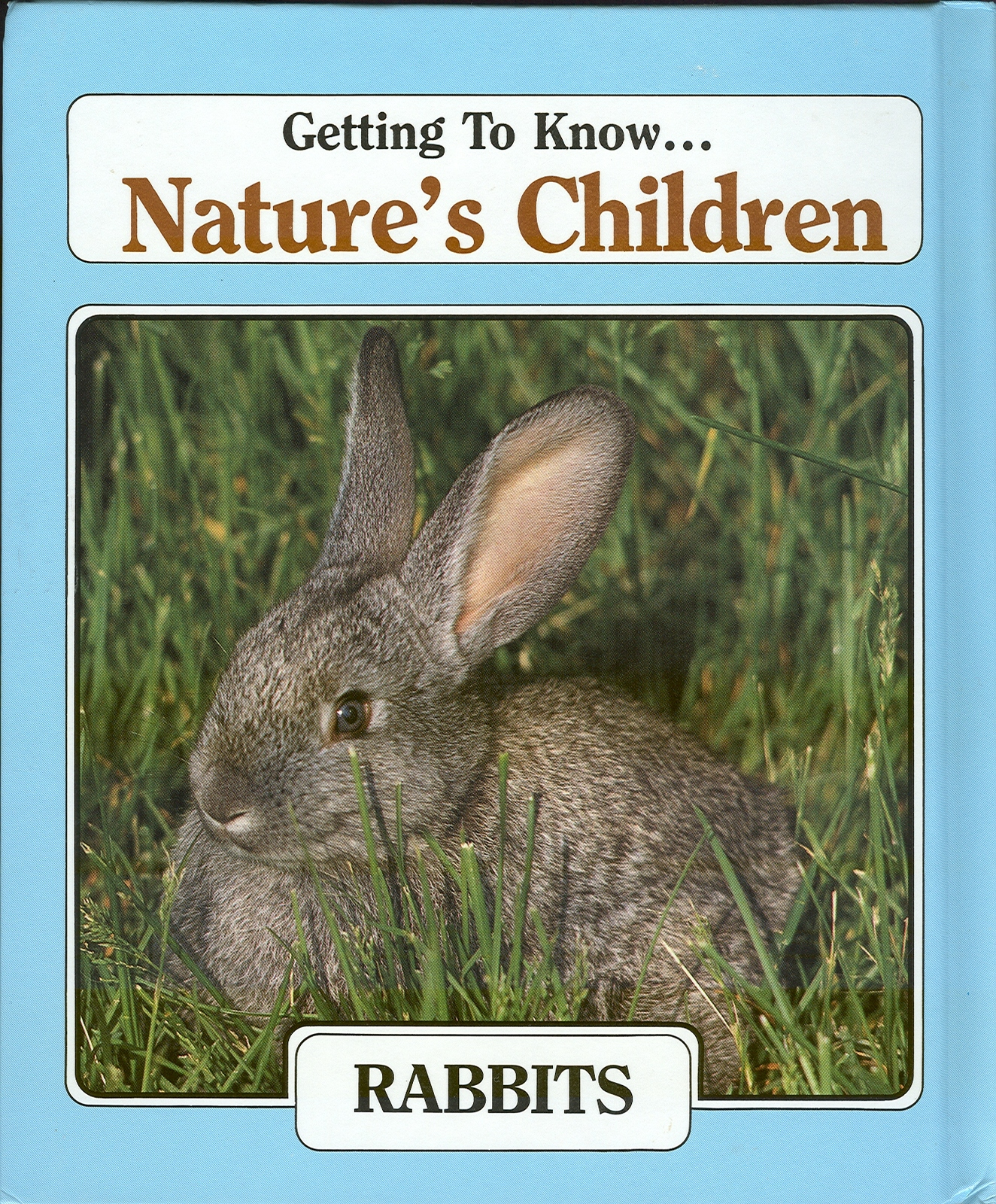 GETTING TO KNOW NATURE'S CHILDREN-8 TITLES-EAGLE,BEAVER,SNAKE,RABBIT,COUGAR,DEER