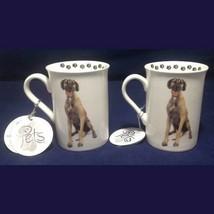 Mug Cup Great Dane Dog Ceramic Coffee Tea Pets Dimensions 9oz TWO - $19.80
