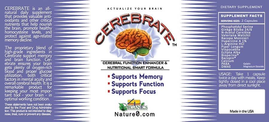 How to improve fetal brain development photo 9
