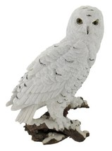 Things2Die4 Beautiful Snowy Owl on a Branch Statue - $40.66
