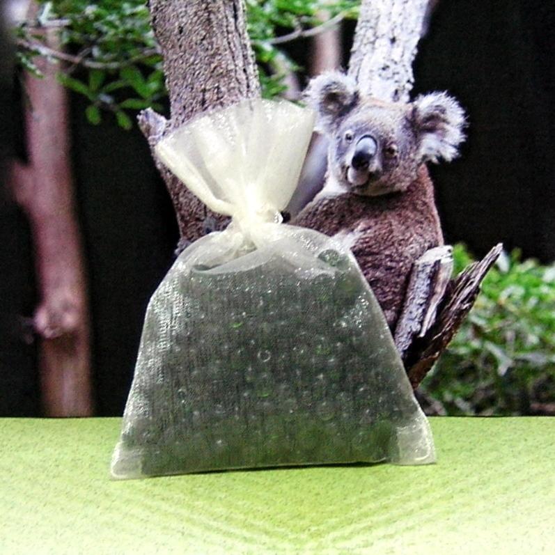 Sachet eucalyptus 1