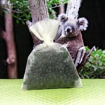 Sachet eucalyptus 1 thumb200