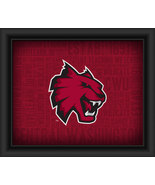 "Central Washington University Logo Plus Word Clouds"" -15 x 18 Framed Print - $49.95"