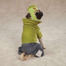 Casual Canine Frankenhound Costume, Small - $29.95