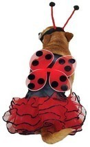 "Lucky Bug Dog Costume Size: X-Small (10"" H x 8.5"" W x 0.25"" D) - $34.95"
