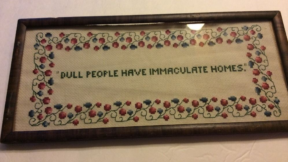 Finished Cross Stitch Framed Dull People Have Immaculate Homes 13 X 6