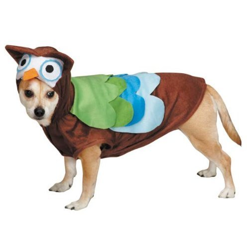 Zack & Zoey Cute Hoots Costume, Small