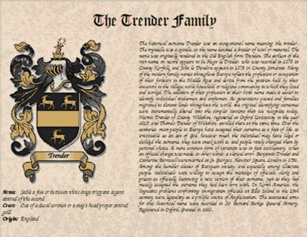 COAT of ARMS / Family Crest & SURNAME Origin / History on parchment style paper