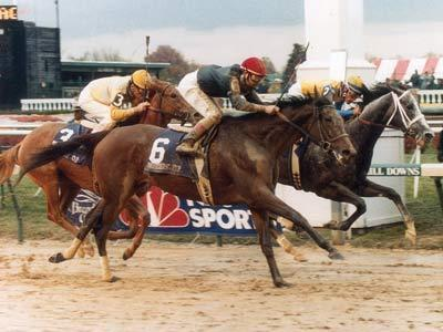 Primary image for DVD - 1988 BREEDERS' CUP...PERSONAL ENSIGN/Alysheba/MIESQUE/Easy Goer/OPEN MIND