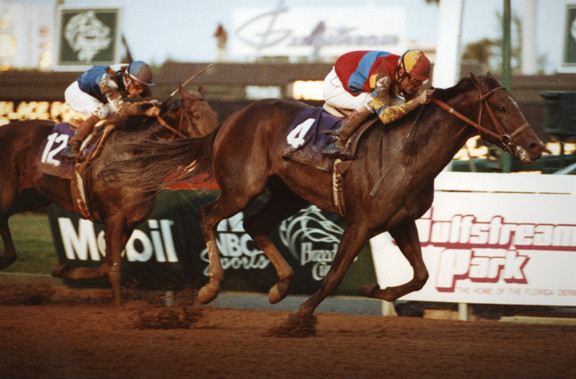Primary image for DVD - 1992 BREEDERS' CUP...A.P. INDY/Eliza/FRAISE/Paseana/LURE/Gilded Time