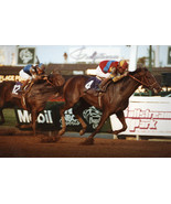 DVD - 1992 BREEDERS' CUP...A.P. INDY/Eliza/FRAISE/Paseana/LURE/Gilded Time - $39.99