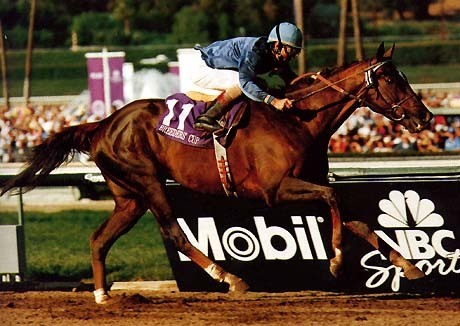 DVD - 1993 BREEDERS' CUP...ARCANGUES/Lure/BROCCO/Hollywood Wildcat/KOTASHAAN