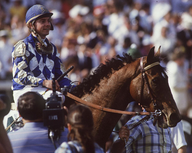 Primary image for DVD - Entire 1987 TRIPLE CROWN Race Broadcasts...ALYSHEBA & BET TWICE w/BONUS