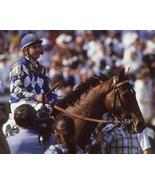 DVD - Entire 1987 TRIPLE CROWN Race Broadcasts...ALYSHEBA & BET TWICE w/... - $44.99