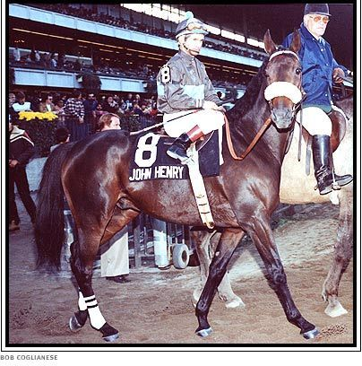 Primary image for DVD - JOHN HENRY 12 Entire RACES & RETIREMENT Time Capsule