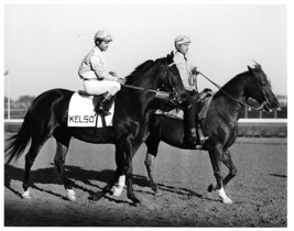 DVD - KELSO 10 ENTIRE Races/Retirement TIME CAPSULE w/FOREGO & JOHN HENR... - $34.99