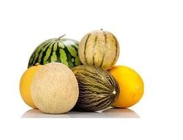 Multiple Variations of Rare Melon Seeds Watermelon Musk Big Cantaloupe Garden - $0.99+