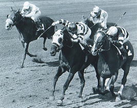 DVD - Racing's GREATEST RACES of all Time! JAIPER & RIDAN/AFFIRMED & ALYDAR - $34.99