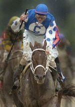DVD - SMARTY JONES...America's Horse...2004 KENTUCKY DERBY & PREAKNESS W... - $34.99