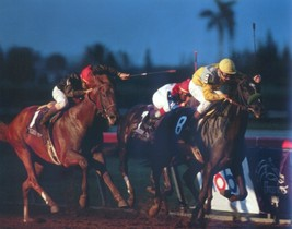 DVD - SUNDAY SILENCE & EASY GOER - 14 Entire/Uncut RACES COLLECTION - $39.99