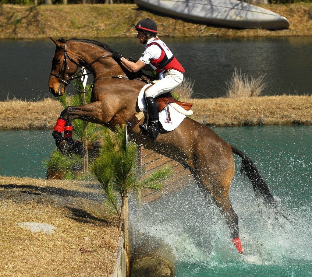 Primary image for DVD - The HORSE in SPORT: EVENTING