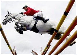 Dvd   The Horse In Sport: Showjumping - $39.99