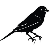 Bird Wall Decal Sticker - Animal Decoration Mural - 42 in. Black [Kitchen] - $34.95