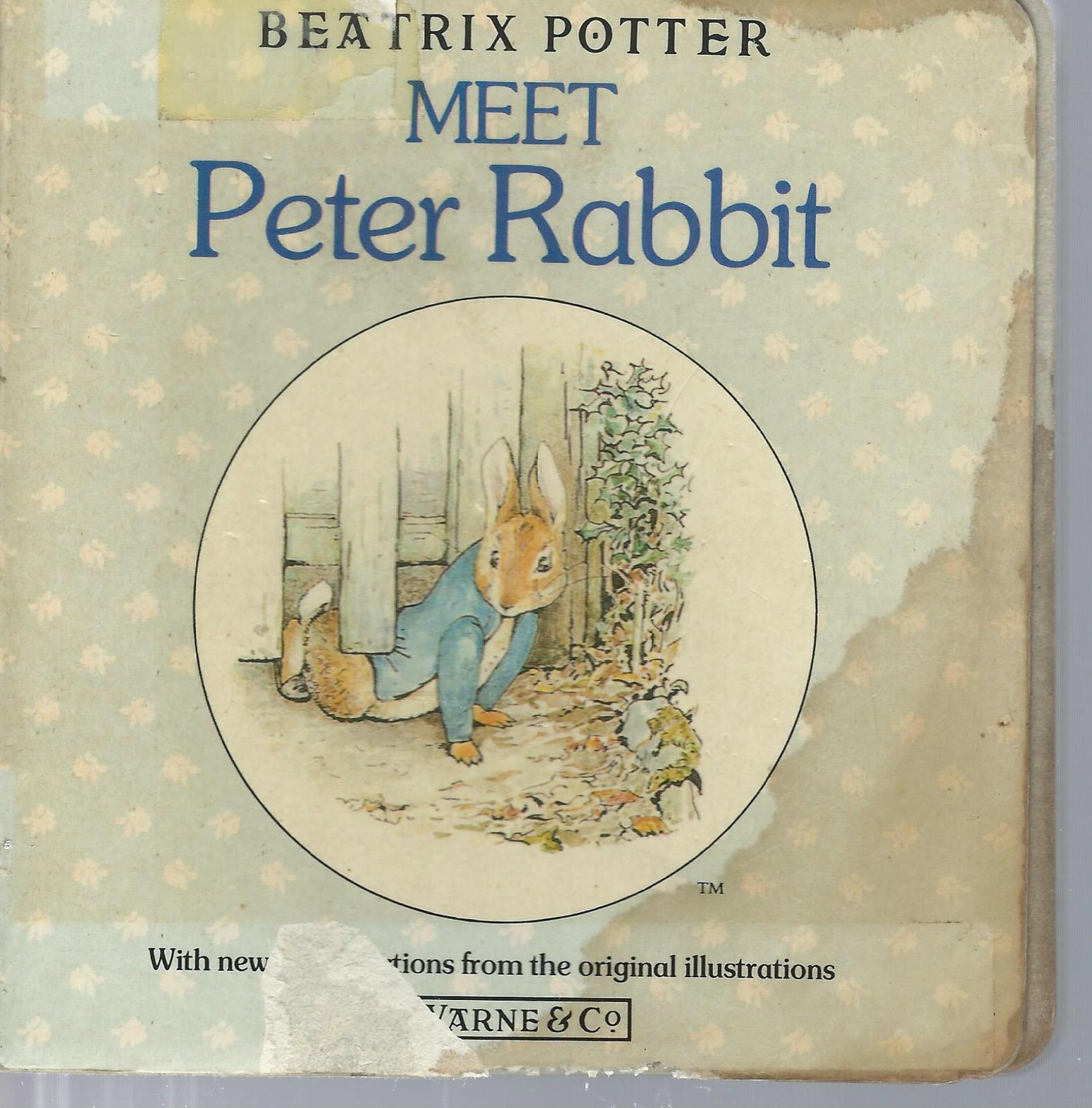 LOT OF 17 BOARDBKS:BABYBOP,PETER RABBIT,CLIFFORD,MICKEY,GHOSTS,JONAH,BEAR,WORDS