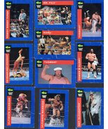 Wrestling Trading Card - (Lot of  10 Titan Sports cards -1991) - $6.95