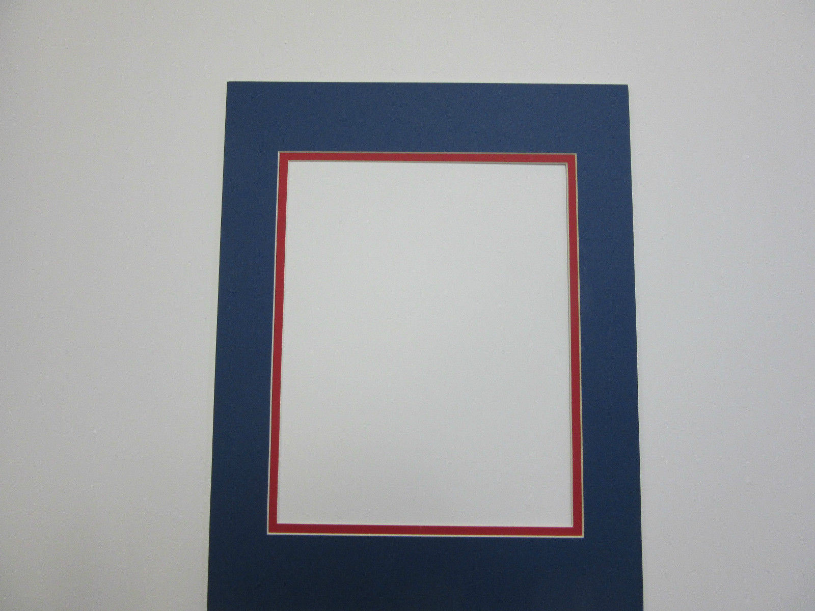 Picture Frame Double Mat 11x14 for 8x10 and 50 similar items