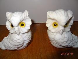 Pair of Vintage White Owl Alabaster Sand Salt Stone Figurines - $23.37