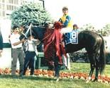 1988 kd   winning colors thumb155 crop