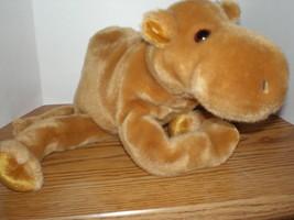 Ty Humphrey Beanie BUDDY The Camel RARE MWMT Retired Tush Tag 1998 - $13.96