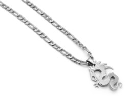 """Stainless Steel Silver Plated Dragon Medal Pendant 24"""" Figaro Necklace C... - $19.79"""