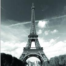 EIFFEL TOWER PARIS Design 180 x 180 cm Bathroom Use Polyester SHOWER CUR... - $23.99