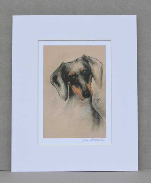 Doxie dachshund dog art print by cori solomon