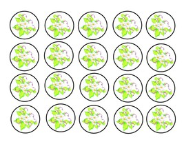 Medium Circle 200E-Download-ClipArt-ArtClip-Digital Tags-Digital - $2.00