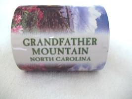 Souvenir Mug Photographs of Bridge  Grandfather Mountain  North Carolina - $12.99