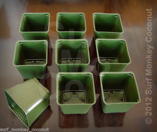 "150 Plastic Flower Pots + 5 Plant LABELS! BEST Nursery Seed Starts 3.5"" Square"