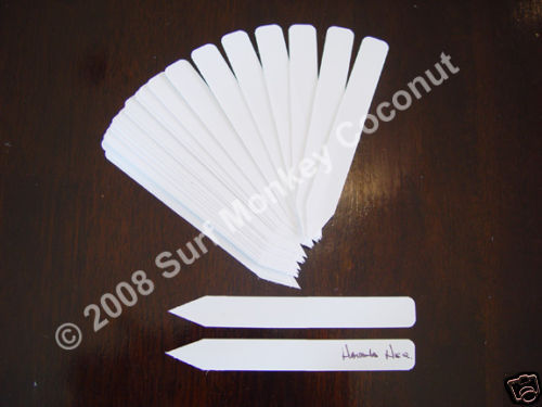 "25 White Plastic Plant Seedling Labels: 5"" Long, All Weather Ideal For Marking"