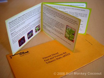 Heirloom Seed Starter Kit: Plastic Pots + Seedling Trays + Plant Labels + Seeds