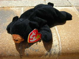 Beanie Babies Baby TY Blackie the Bear 1994 Retired Collectible - $4.90