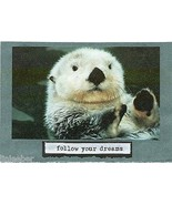 """FATHER'S DAY CARD-""""FOLLOW YOUR DREAMS"""" OTTER;5""""X7"""";w/ENVELOPE;CELLOPHANE... - $9.99"""