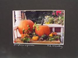 8x10 Matted Photograph Pumpkins & Gourds Vermont #352 - $14.26