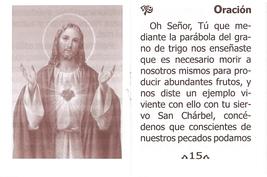 Oraciones a San Charbel Majluf - LS224 image 4