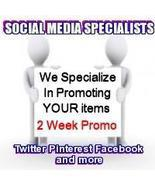 Social Media Specialists 14 Day Twitter Package + Media